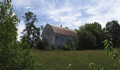 Backyard - Barn